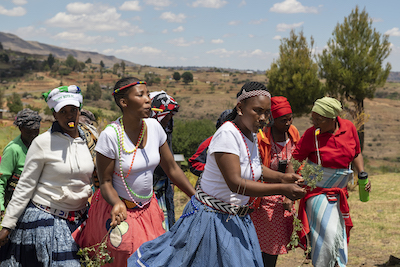 Women dancing in initiation ceremony, Lesotho